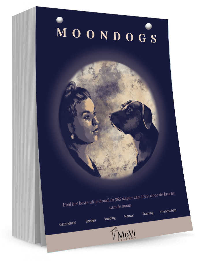Moondogs Kalender TEXT HIER